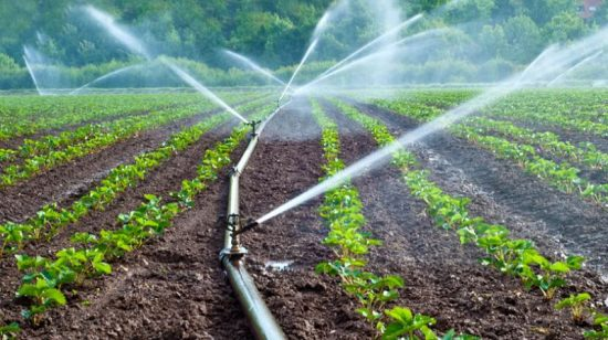 Irrigation and CAD Department Tg