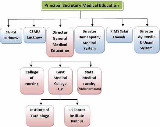 dgme structure