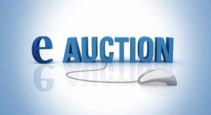 mstc e auction
