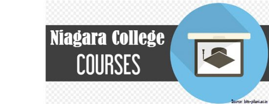 niagara college international courses