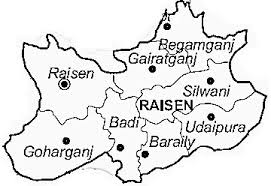 Raisen district