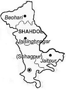 Shahdol district