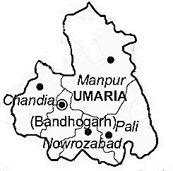 Umaria district