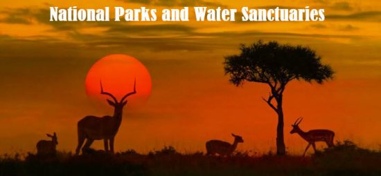 list of national parks in india wiki