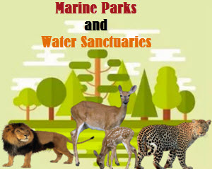 Top 5 Marine National Parks in India