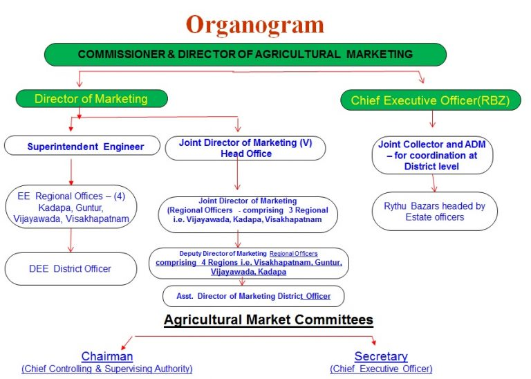 AP Agricultural Marketing Department