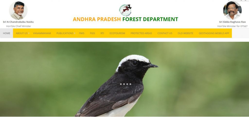 Andhra Pradesh Forest Department