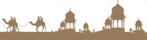 rajasthan state forts