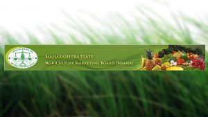 maharashtra state agriculture marketing board