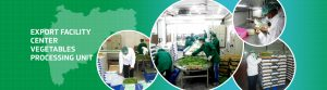 MSAMB vegetable processing